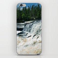 Swim Upstream iPhone & iPod Skin