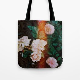 Roses with light leak Tote Bag