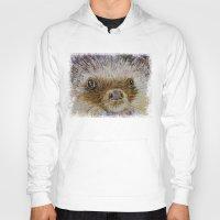 hedgehog Hoodies featuring Hedgehog by Michael Creese