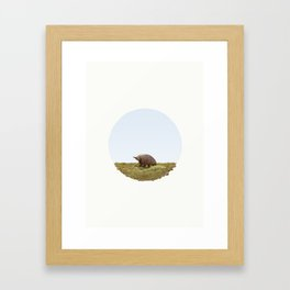 Short-beaked echidna (Tachyglossus aculeatus) Framed Art Print