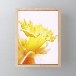 Spring Has Sprung Framed Mini Art Print