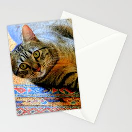Click, Wha...! Stationery Cards