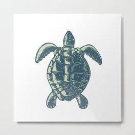 Sea Turtle Top View Scratchboard Metal Print