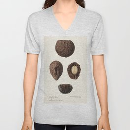 Pekea nut (Caryocar Nuciferum)(1920) by Royal Charles Steadman Unisex V-Neck
