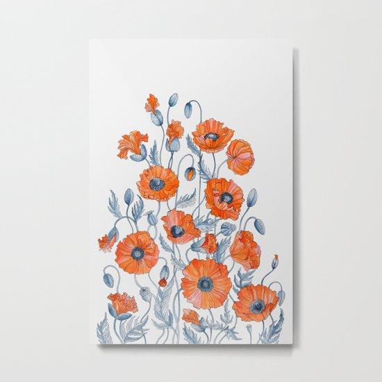 Poppies botanical art Metal Print
