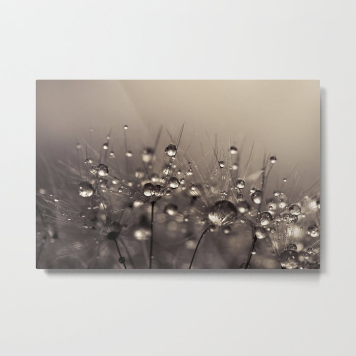 Sepia Shower Metal Print
