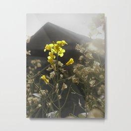 Summer Yield Metal Print