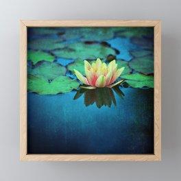waterlily textures Framed Mini Art Print
