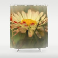 daisy Shower Curtains featuring Daisy by Falko Follert Art-FF77