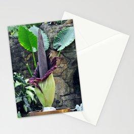Amorphophallus Titanum Stationery Cards