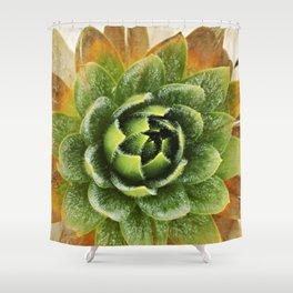 Frailejon. Shower Curtain