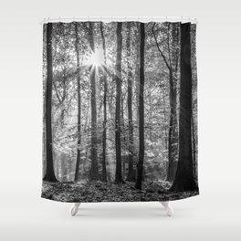 Beech Wood Sunrise Shower Curtain