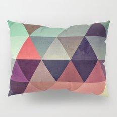 tryypyzoyd Pillow Sham