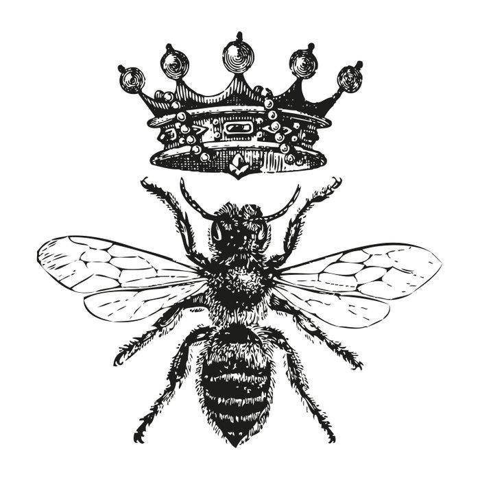 Queen Bee | Black and White Comforters