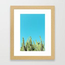 Desert Cactus Reaching for the Blue Sky Framed Art Print