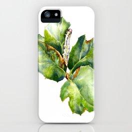 California Oak Moth Caterpillar iPhone Case