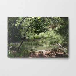 A magical place II Metal Print