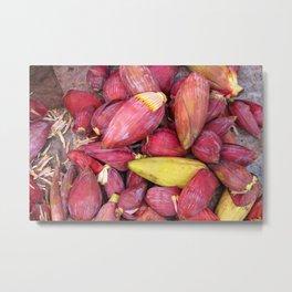 Banana Flowers  Metal Print