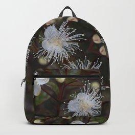 Ramarama : Bubble leaf : New Zealand Endemic Backpack