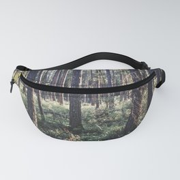 Pine Forest in Sunlight Fanny Pack