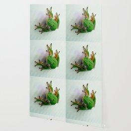 Green Tree Frog Wallpaper