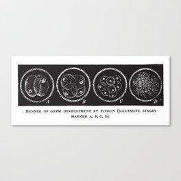 Fission Canvas Print