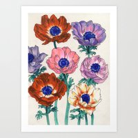 poppies Art Prints featuring poppies by Ania