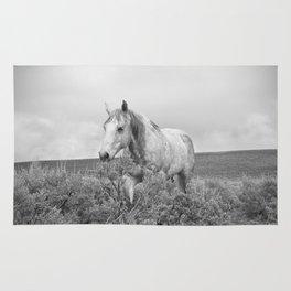 Stormy Walk Horse Photograph Rug