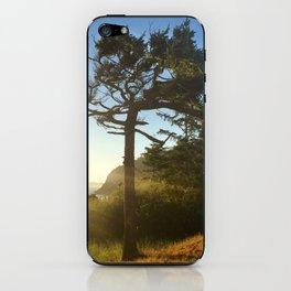 Deception Pass Devine Light Bonsai Tree iPhone Skin