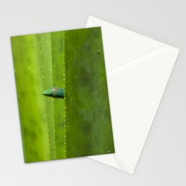 Peekaboo! A gecko in the agave Stationery Cards