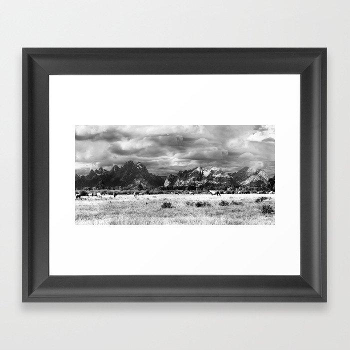 Horse and Grand Teton (Black and White) Gerahmter Kunstdruck