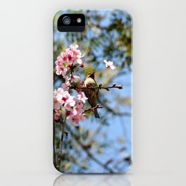 Cherry Blossom Bird iPhone Case