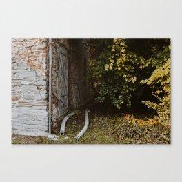 Overgrowth // Building Canvas Print