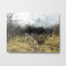 Early Morning Mist Metal Print