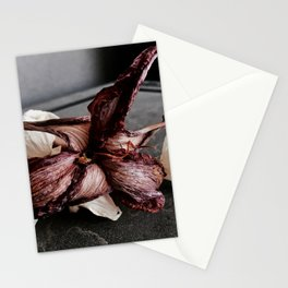 Faded Allure Stationery Cards