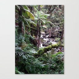 Tropical Forest 09 Canvas Print
