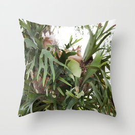 Staghorn Fern Obsessed Throw Pillow