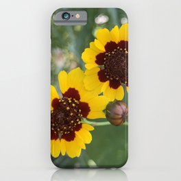 Coreopsis Beauty iPhone Case
