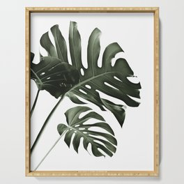 Tropical Monstera Finesse #4 #minimal #decor #art #society6 Serving Tray