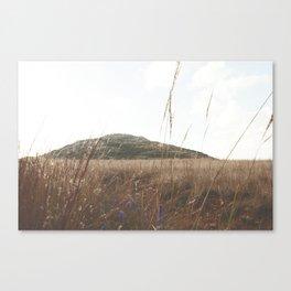 Mount Scott Whimsical Canvas Print