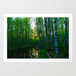 Spring evening on the forest river Art Print