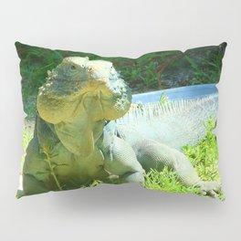 Iguana and Chill Pillow Sham