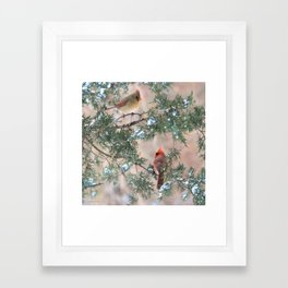Winter Pair Cardinals (sq) Framed Art Print