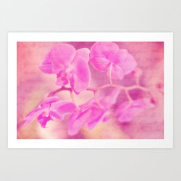 Scripted Orchid Art Print