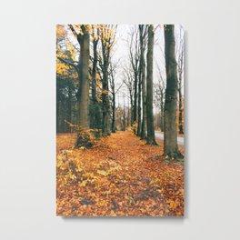 Autumn Escape Metal Print