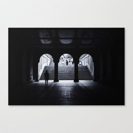 From Dark to Light Canvas Print