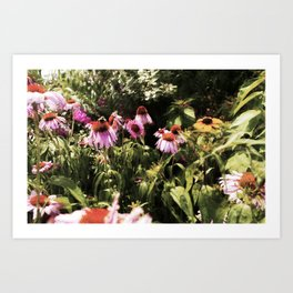 Summer in the Ether: Wild Flowers of Bright Pastures Art Print