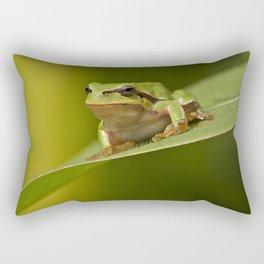 Frog's life Rectangular Pillow