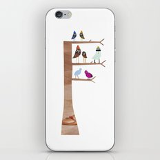 Birds iPhone & iPod Skin