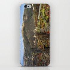 Big Sur Mountains iPhone & iPod Skin